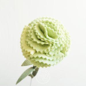 Carnation Pistachio