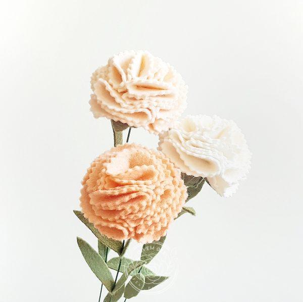 Carnation mixed
