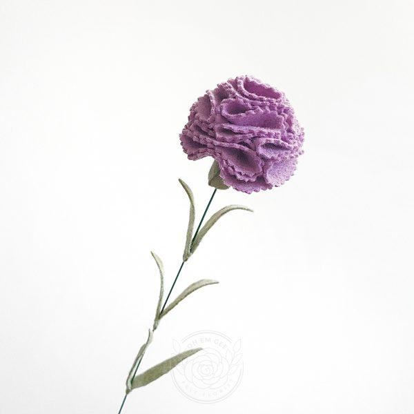 Carnation hydrangea