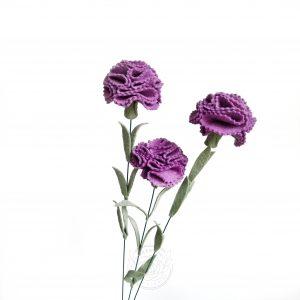 Carnation hrydrangea